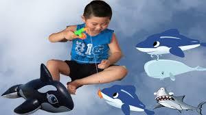 trò chơi câu cá trong nhà - bé khám phá đồ chơi mới ♥️Bảo Nam ...