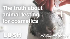 the truth about testing for