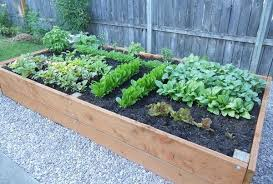 how to build a raised planter bed for