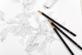 learning to draw with graphite pencil
