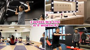 we joined tfx gym for 2 weeks
