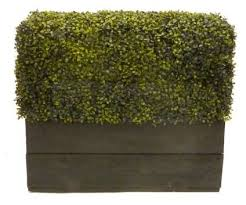 Artificial Boxwood Hedge Panels At Evergreen Direct