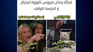أغرب صور مضحكة عن الحجر المنزلي في الجزائر شعب مجنون Youtube