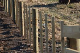 Wire And Batten Fence Manawatu New Zealand Goat Fence Wire Fence Chain Link Fence Panels