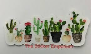 Cactus Cacti Flower Plant Sticker Water Bottle Laptop Tumbler Vinyl Decal Ebay