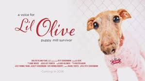 Filmmakers hope to end puppy mills with new documentary