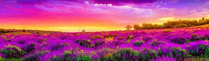beautiful landscape free web headers