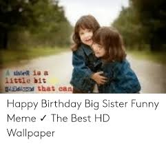 happy birthday big sister funny