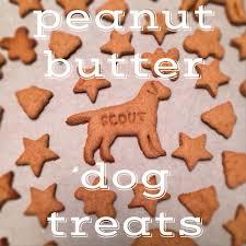 homemade dog treats recipe peanut