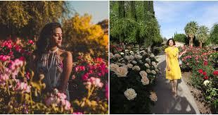 el paso munil rose garden is a