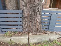Outback Fencing Fence Installation Tips For Working Around Your Trees