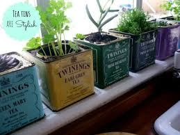 design tips stylish herb gardens with
