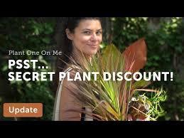 plant pub crawl new 110