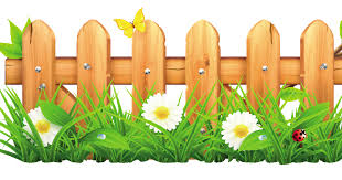 Fence Cartoon 1200 630 Transprent Png Free Download Grass Plant Mayweed Cleanpng Kisspng