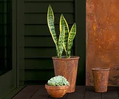 How To Use Rust Effect Paint To Add Old Age Charm To Your Outdoor Space