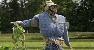 the draw of straw at a scarecrow show