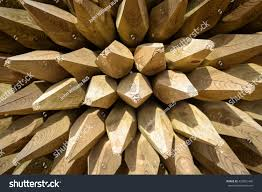 Large Pointed Ends Spikes Pile Wooden Stock Photo Edit Now 420051460