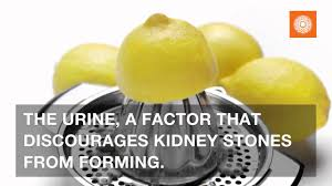 4 drinks that cleanse the kidneys you