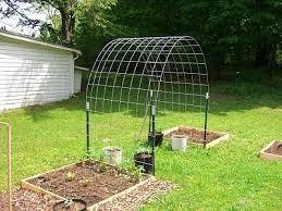 Wire Fencing Arbor For Climbing Vegetables Garden Trellis Garden Vines Raised Garden