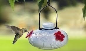 homemade hummingbird food homemade guides