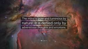 """buddha quote """"the mind is pure and luminous by nature it is"""