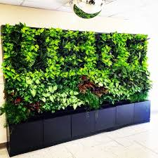 we build up with plants greenwalls