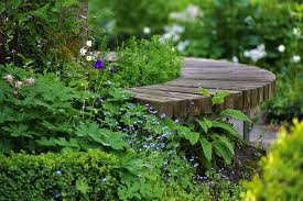 bench park flowers wooden free photo