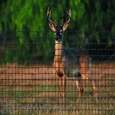 Tenax Deer Fence C Flex Premium 1a120386