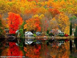 fall scenes wallpapers top free fall