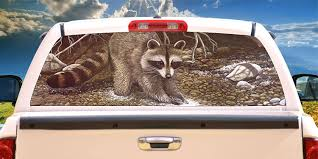 Amazon Com Tire Cover Central Racoon The Prospector Rear Window Mural Decal Or Tint Choose Size Or Send Your Own Measurements Automotive