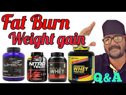 whey protein burning fat or weight gain