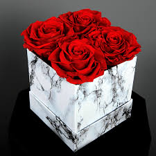 long lasting preserved red rose in a