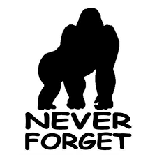 10 2cm 13 6cm Never Forget Harambe Car Styling Stickers Decals Vinyl Decor S4 0143 Car Styling Car Styling Stickerscar Stickers Decoration Aliexpress