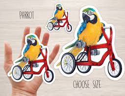Cute Parrot On Tricycle Vinyl Stickers Laptop Iphone Cute Etsy