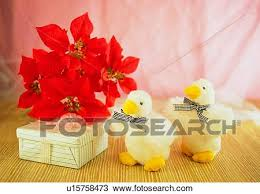 decoration duck poinsettia