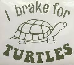 Vinyl Decal Sticker I Brake For Turtles Etsy