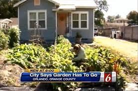 fight anti front yard veggie garden