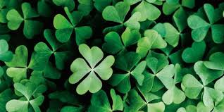 Image result for four leaf clover