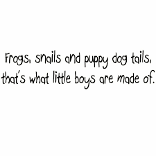 Winston Porter Duckett Frogs Snails And Puppy Dog Tails That S What Little Boys Are Made Of Wall Decal Wayfair