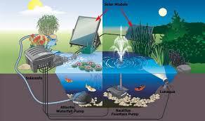 garden pond pumps solar powered