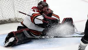 With Coyotes' playoff chances likely tied to goaltending play, Roadrunners' Adin  Hill and Ivan Prosvetov make case Arizona is four deep in net | Roadrunners  | tucson.com