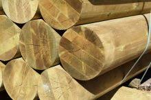 Total Poles Purchase Timber Poles And Wooden Posts