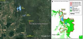 Satellite images show more forests being logged in Ulu Muda ...