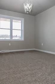 gray plush carpet grey walls and