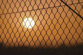Cyclone Chain Link Fence Fencing Quotes Online Quote In 2 Mins
