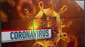 Image result for corona virus