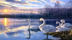 art painting swan lake sunset landscape