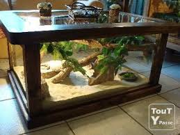 diy wood terrarium iskanje google
