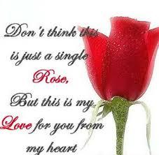 kata mutiara tentang bunga mawar dalam bahasa inggris dan