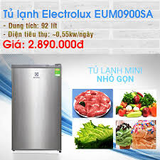 Tủ lạnh Electrolux 92 lít EUM0900SA Link... - Điện máy XANH  (dienmayxanh.com)